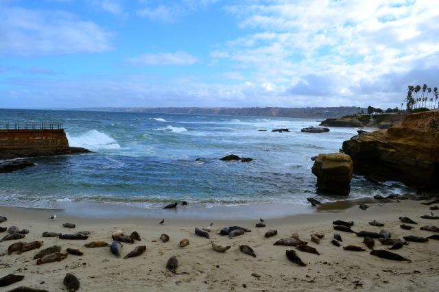 Seal Beach, La Jolla