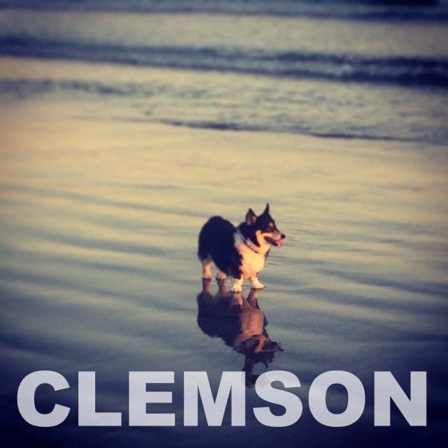 Clemcon