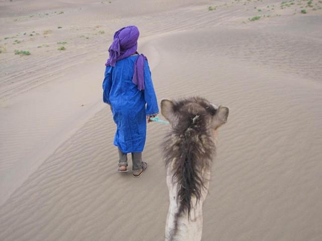 Sahara 13